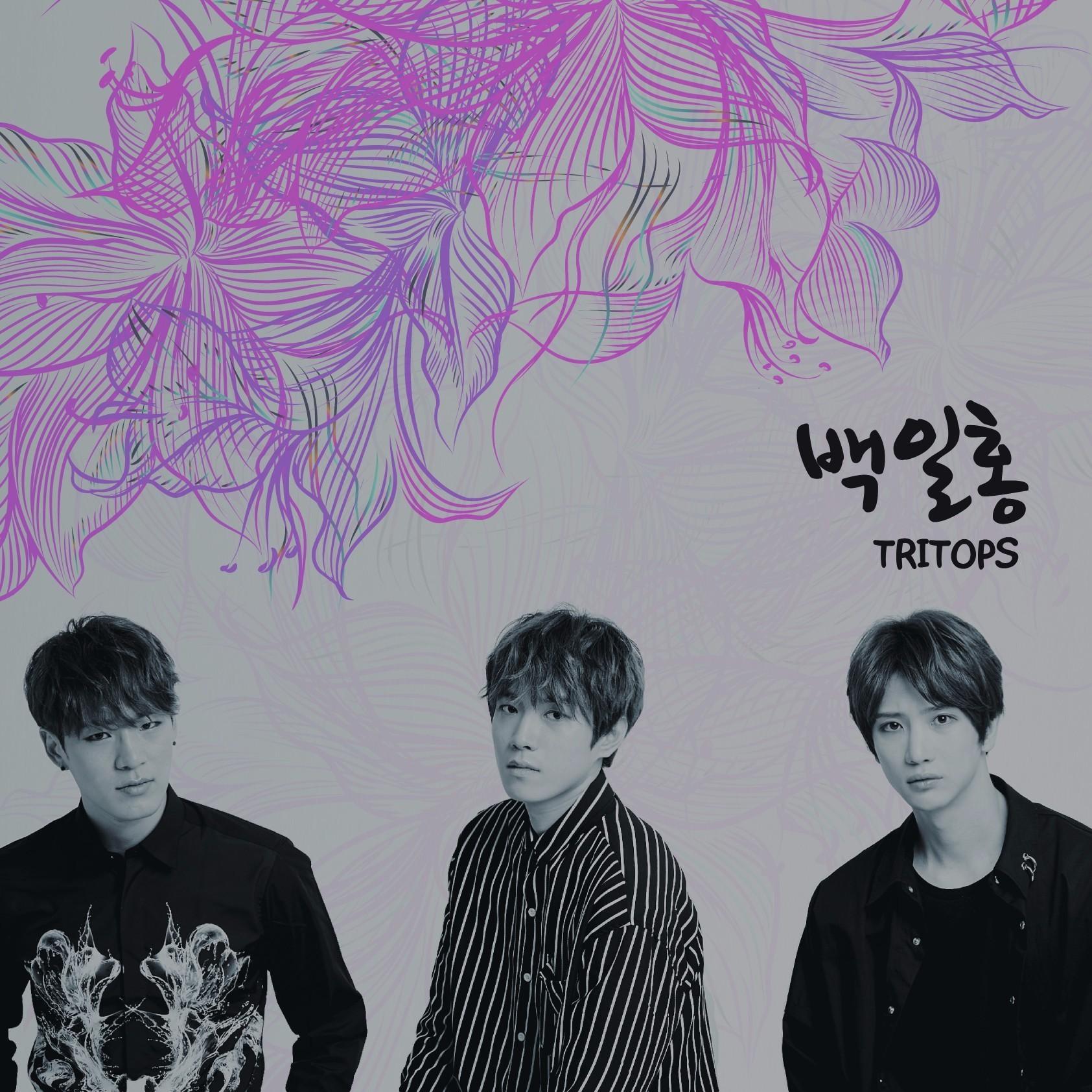 Hyakujitukou_korea